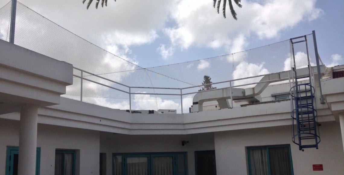 התקנת רשת מקצועית בגג בית ספר למניעת גישת ציפורים