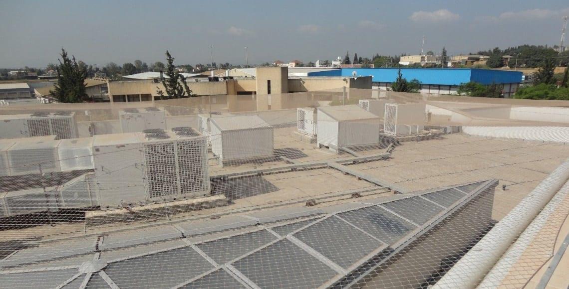 התקנת רשת מקצועית למניעת גישת יונים בגג טכני בבית ספר