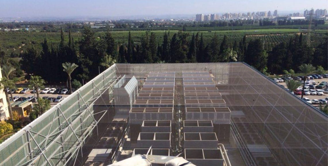 התקנת רשת מקצועית למניעת גישת יונים בגג טכני