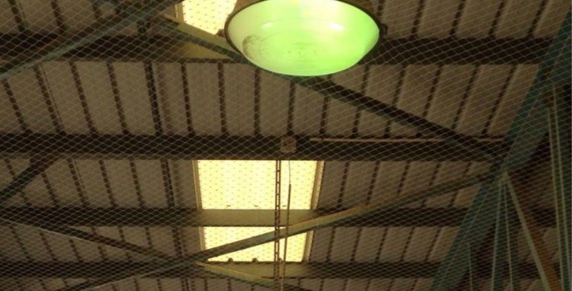 התקנת רשת מקצועית למניעת גישת יונים בתקרה כולל יצירת פתחי שירות