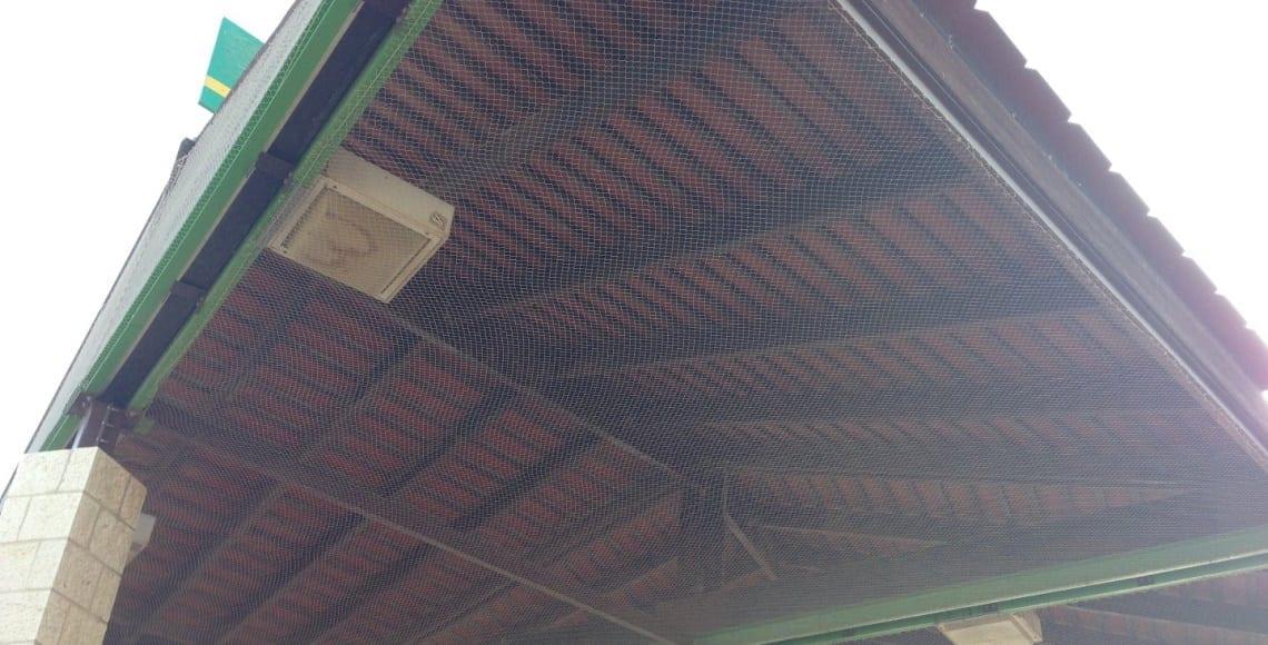 התקנת רשת מקצועית למניעת גישת יונים בתקרת מבנה תחנה