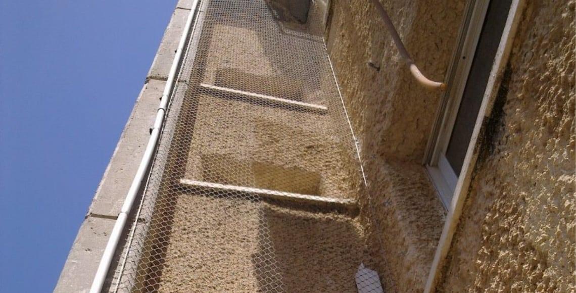 התקנת רשת מקצועית למניעת גישת יונים ומיינות בפיר חלונות